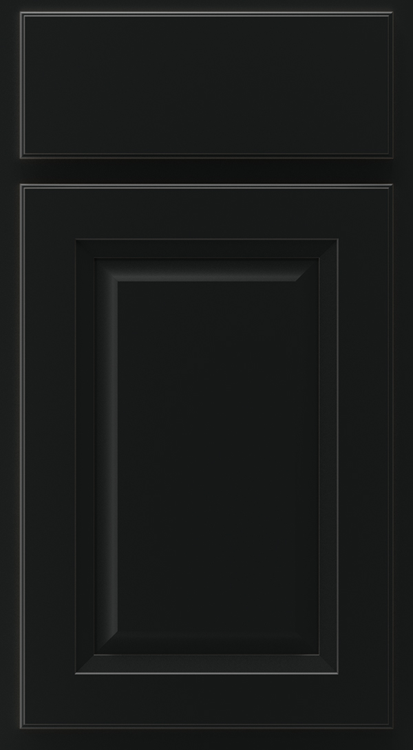 lawry_maple_raised_panel_cabinet_door_onyx
