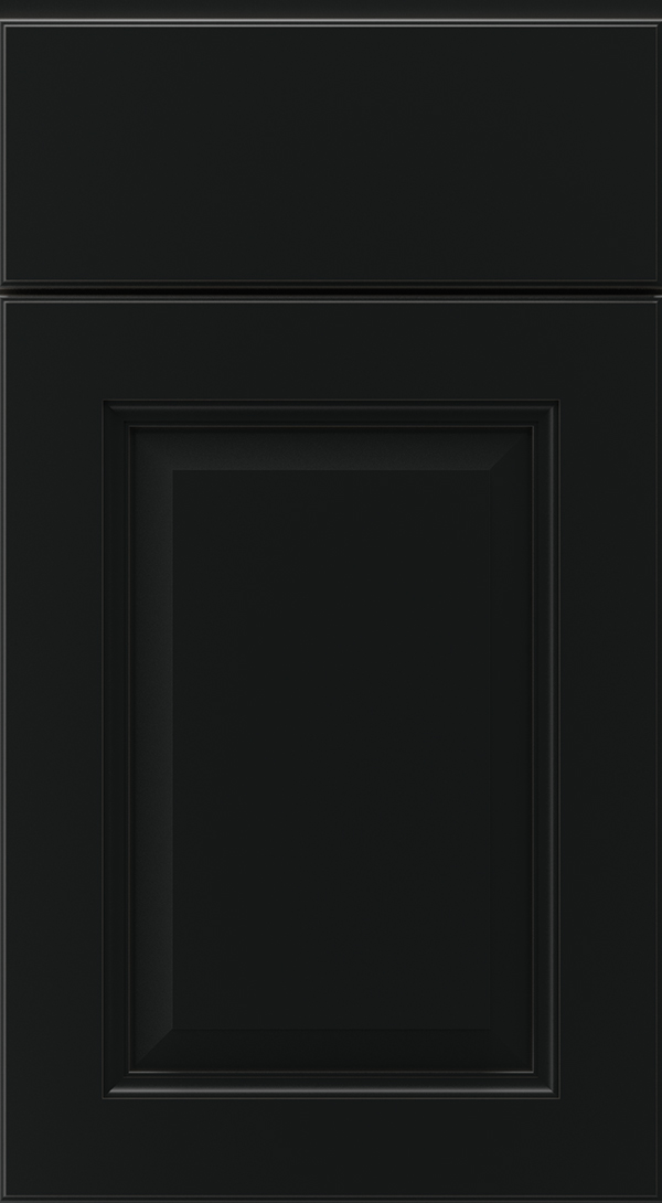 montella_maple_raised_panel_cabinet_door_onyx