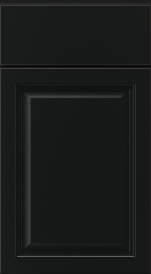ogilby_maple_raised_panel_cabinet_door_onyx